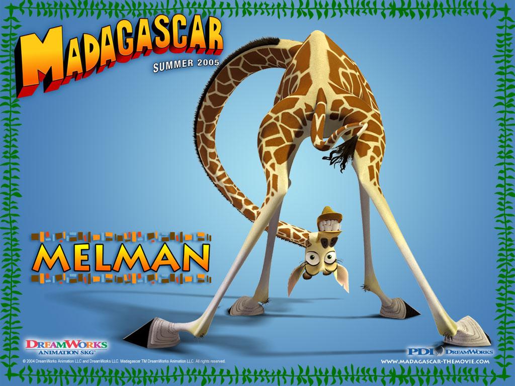 Madagascar Giraffe