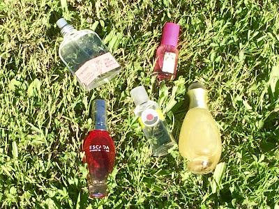 Top 5 parfums été