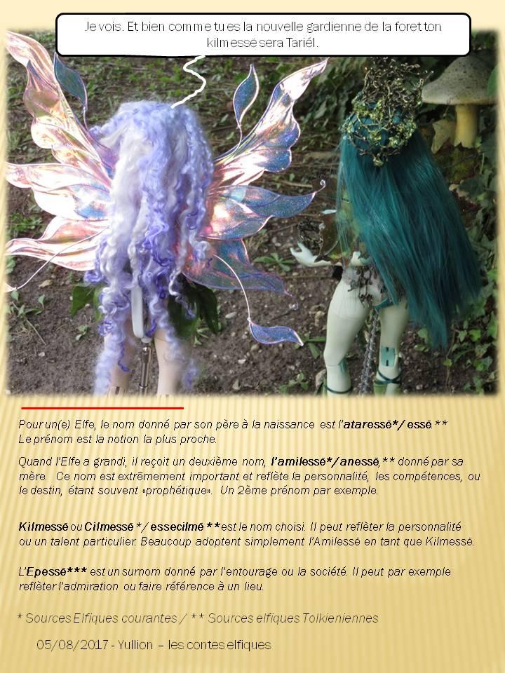 Contes elfik: Yullion&Dragona ep9 p15/abeille charpentiere - Page 16 Diapositive54