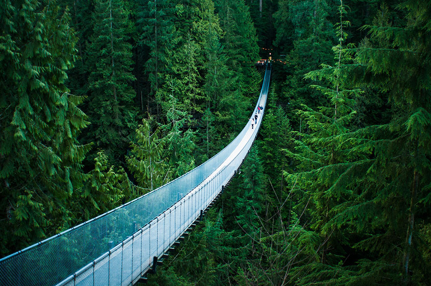 Travel Expectations Vs Reality (20+ Pics) - Walking Across The Capilano Suspension Bridge In Vancouver, Canada