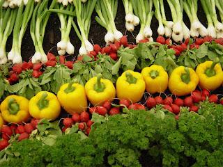 hasil-panen-pertanian