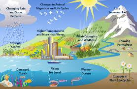 Dampak Yang Disebabkan Global Warming