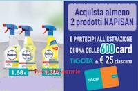 Logo Napisan: ''Vinci Card Tigotà 2019'' ! 600 card da 25€ i n palio! Scopriamo il regolamento integrale