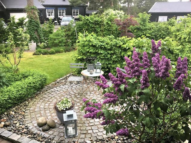 Syrinene likes av flere insekter. Her ser du hagen fra inngangspartiet i Furulunden.