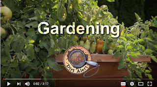 screen shot of gardening video