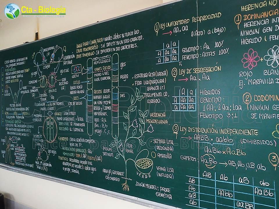 Biología didáctica: NSC 5° - Genética I