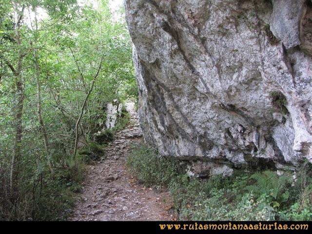 Ruta al Cabezo Llerosos desde La Molina: Camino de la Molina al rio Casaño