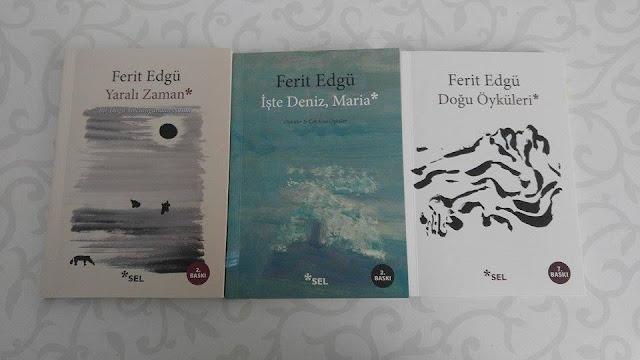 sule uzundere blog ferit edgü kitapları