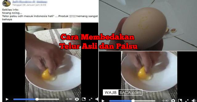 Heboh Telur Palsu, Ini Fakta dan Cara Mudah Membedakan Telur Asli atau Palsu