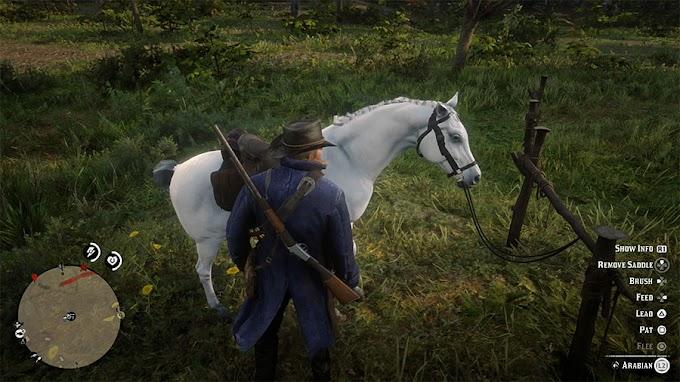 Как приручить белую арабскую лошадь в Red Dead Redemption 2
