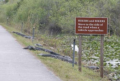 Funny Sign Bikers