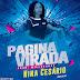 Nina Cesário - Página Virada