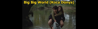 big big world-koca dunya