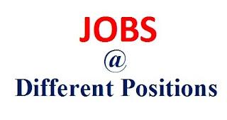 jobs @ letsupdate