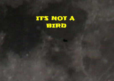 This UFO is not a bird as we cannot see any wings flapping throughout the video.