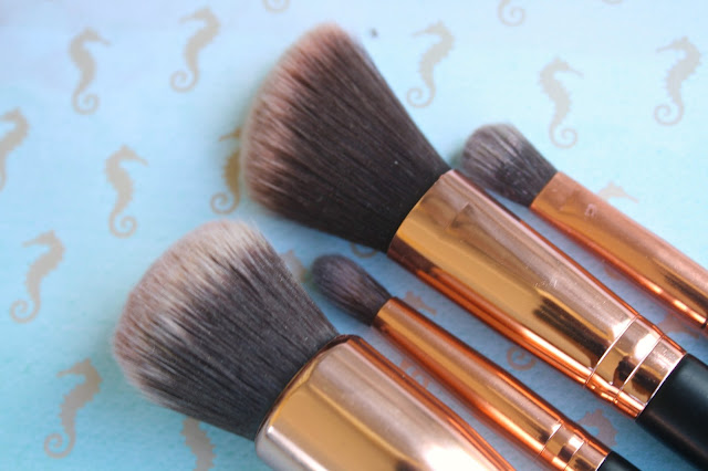 MOTD Brushes Bristle Heads