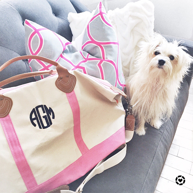 pardon muah, monogram travel tote, decorative pillows, morkie, home, travel