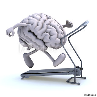 active and healthy brain