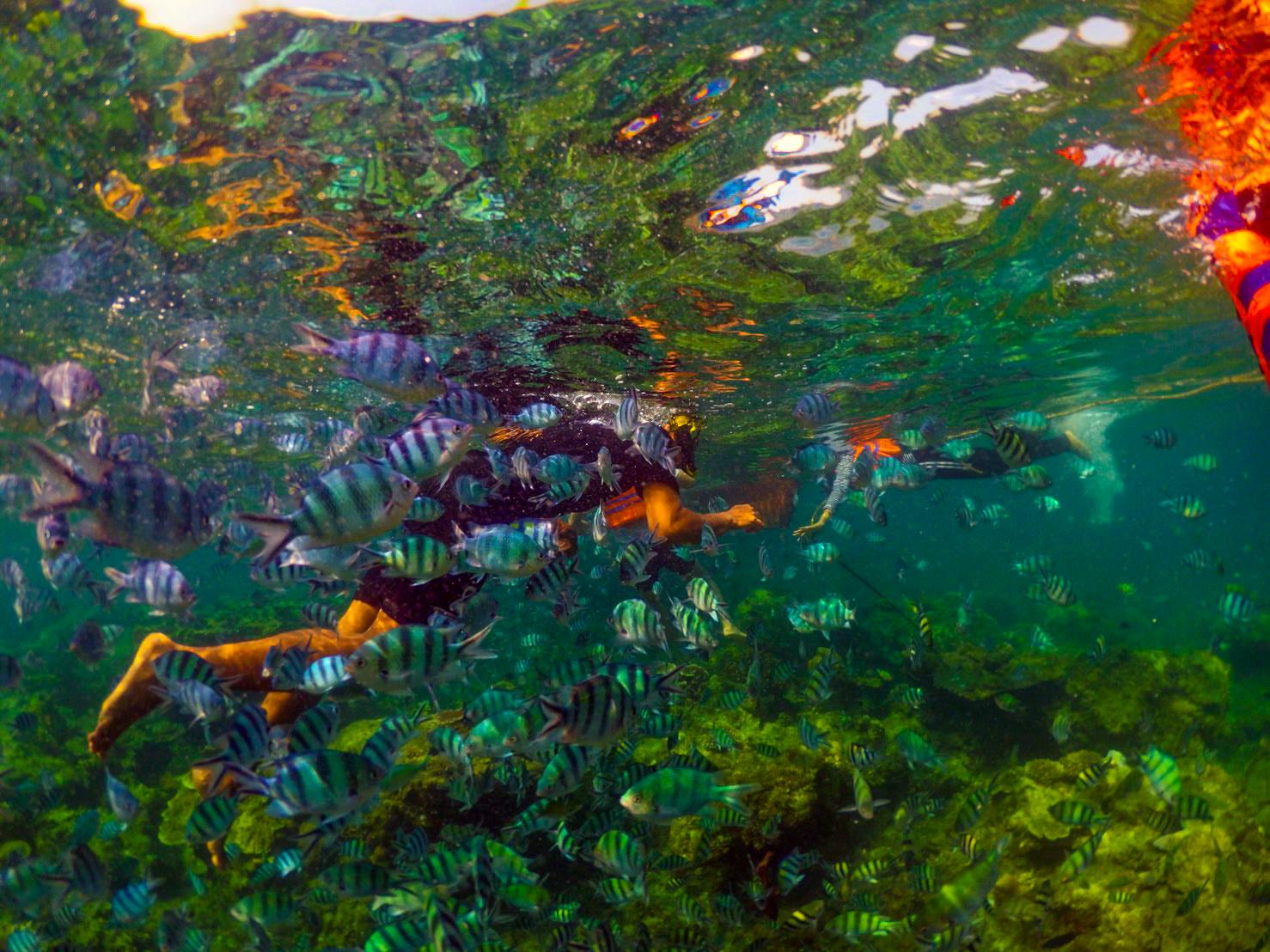 Snorkelling-Pulau-Lengkuas.jpg