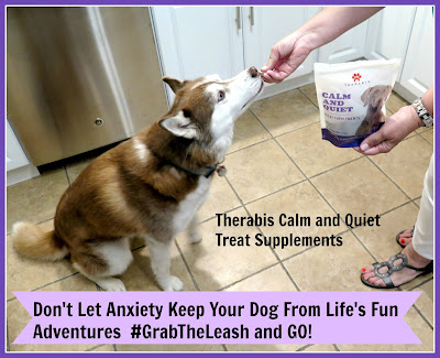 Therabis Calm and Quiet treat supplements can reduce stress levels in dogs and help them remain calm in stressful situations.  #dogs  #anxietyindogs #anxiousdogs #hemp #CBD