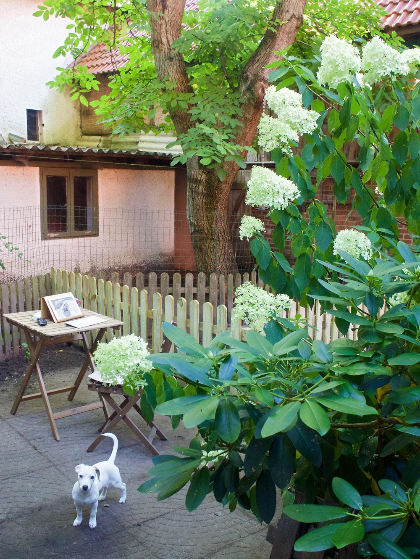 im garten und am wegesrand arbeitsplatz unterm nussbaum. Black Bedroom Furniture Sets. Home Design Ideas