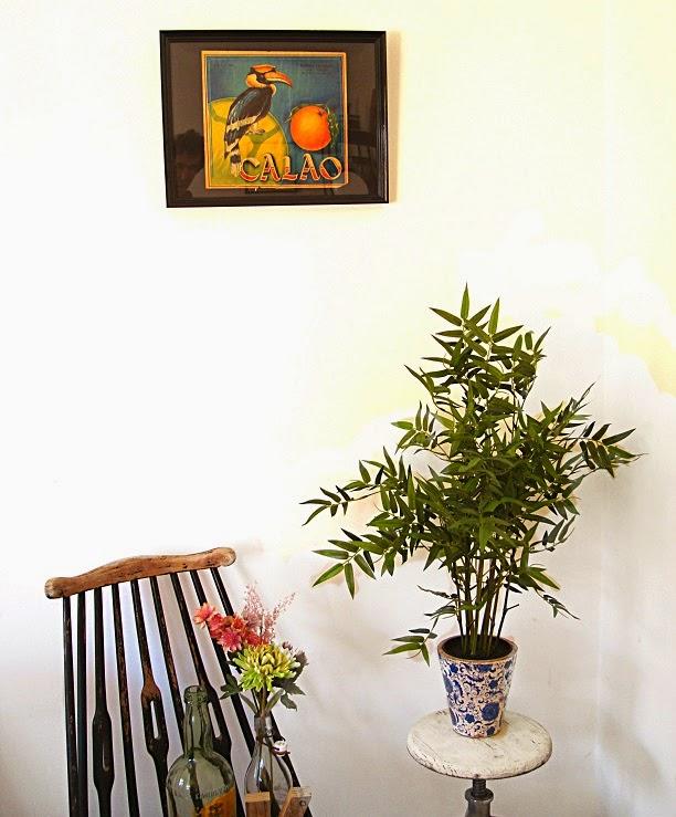 Comprar carteles antiguos de naranjas para decorar