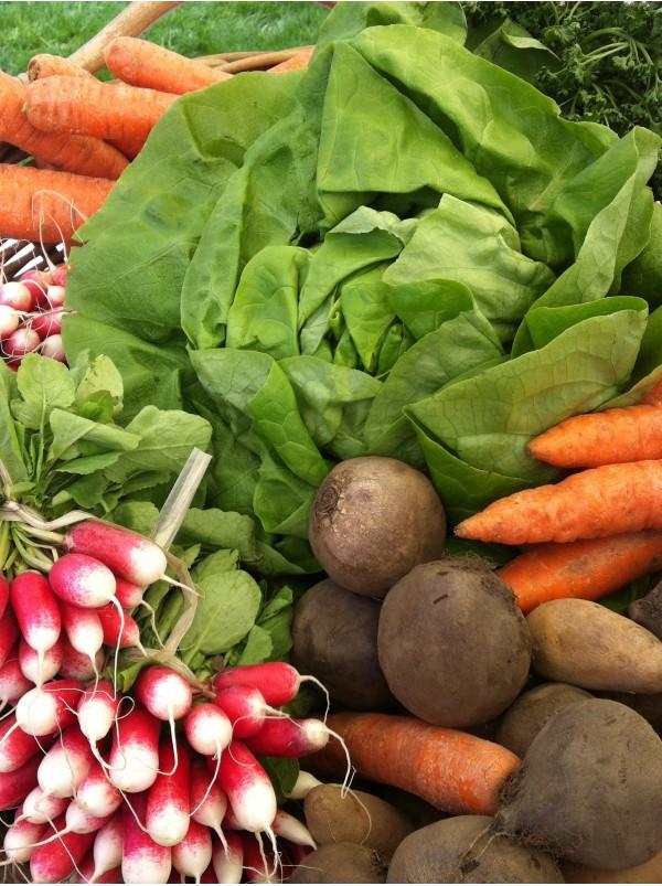 Nutrition - Fruits et legumes de a a z ...