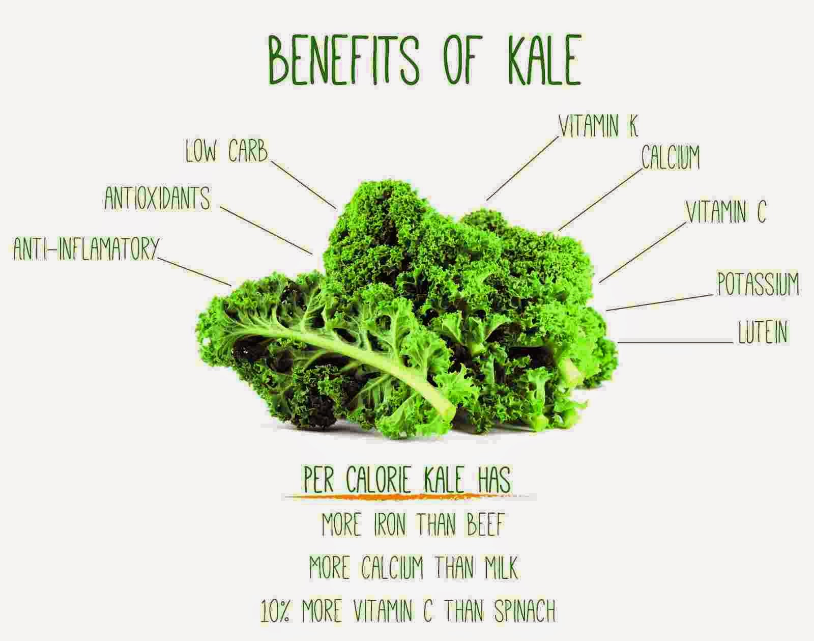 Top 10 Health Benefits of Kale