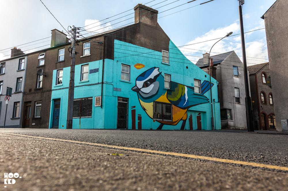 Ireland's Waterford Walls Street Art Festival