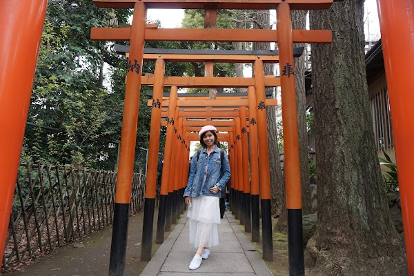 7 Days 6 Night Itinerary Travel to Tokyo, Japan [SAKURA SEASON]