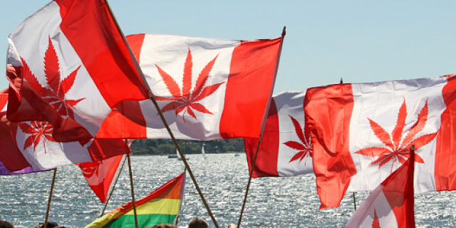 Image Attribute: Canada-Marijuana Rally / FlickrCC / cannabisculture