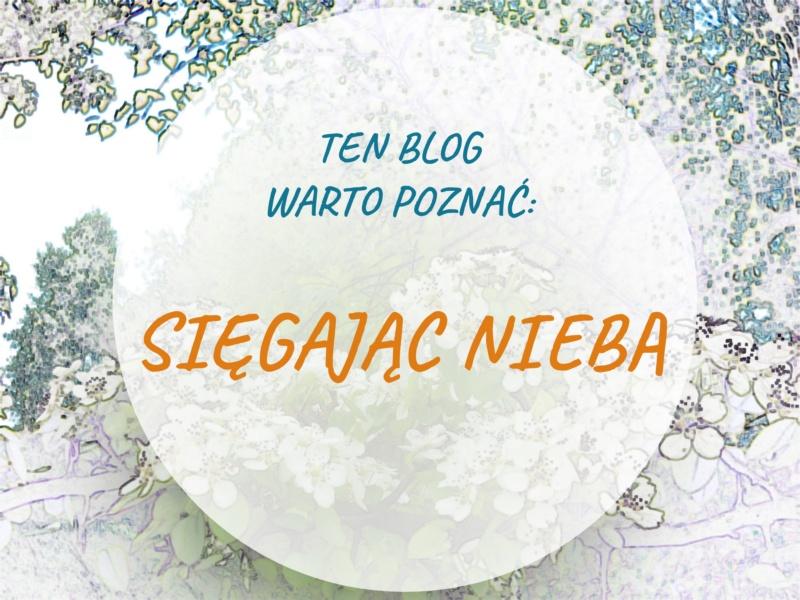 Ten blog warto poznać - Sięgając nieba