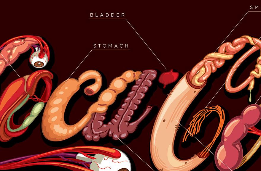 Coca-Cola en nuestro organismo