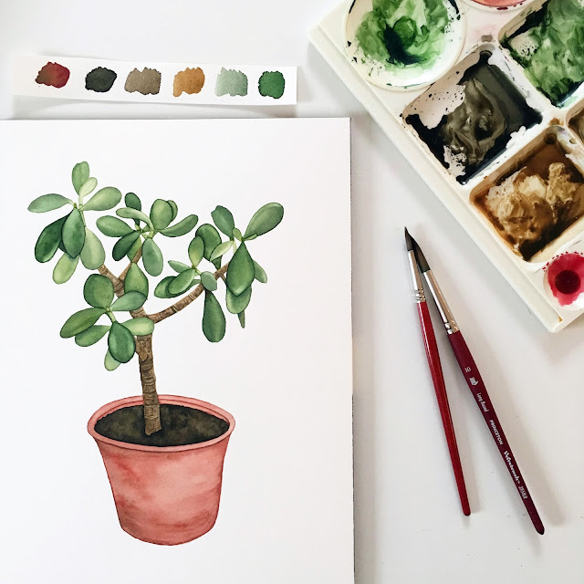 jade plant, succulent, watercolor painting, botanical watercolor, watercolor jade plant, watercolor succulent, houseplant portrait, Anne Butera, My Giant Strawberry