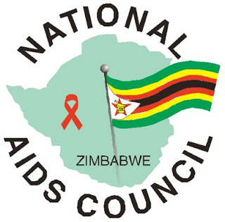 National Aids Council of Zimbabwe says unmarried women are contributing to the spread of HIV
