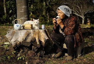 A fotógrafa Miyoko Ihara vem registrando com sua câmera fotográfica, momentos de pura e verdadeira amizade entre sua querida vó Misao Ihara, de 90 anos e seu inseparável gato branco Fukumaru, que chama a atenção de todos por ter olhos ímpares ou bicolor, ou seja olhos de cores diferentes. Apesar de estar perto dos 90 anos, Misao Ihara ainda é bastante ativa, indo ao campo todos os dias para executar pequenas tarefas diárias, junto com seu amigo Fukumaru.  Misao: senhora japonesa com 90 anos de idade; usa na cabeça: um lenço branco com estampa azul, um casaco acolchoado com estampa oriental em bordô, preto e marrom, calça preta de algodão com manchas azuladas na altura dos joelhos e nos pés, jika-tabi em marrom(JIKA significa: para se utilizar em área externa e TABI é uma espécie de meião com recorte no dedão com solado de borracha, muito usado também pelos ninjas).  Fukumaru: gato branco, com o olho esquerdo amarelo e o outro, azul.  Descrição: Foto em dia de sol em uma clareira no bosque. À direita, Misao sentada em cima de uma caixa, apoia os cotovelos nas coxas e nas mãos, um oniguiri (bolinho de arroz japonês em formato triangular envolto por uma folha de nori, uma alga), o qual, está bem próximo a boca. À esquerda, Fukumaru está repousado de maneira semicircular, sobre o tampo de um tronco grosso de árvore, serrado e utilizado como uma mesa baixa e redonda. Ao redor do bichano, uma chaleira de porcelana branca com pintura floral azul e alça de bambu, uma caixa de chá retangular pequena de palha com tampa, e um yunomi (xícara sem alça em fomato cônico) de porcelana branca com veios verticais em cinza.