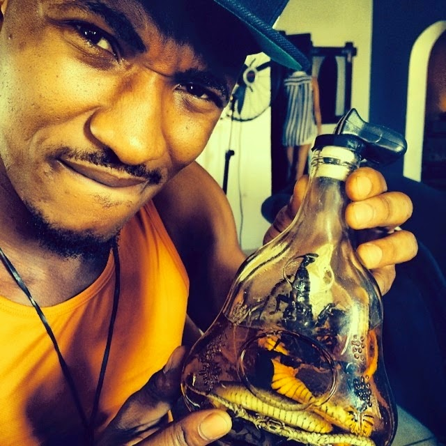 bottle scorpion snake
