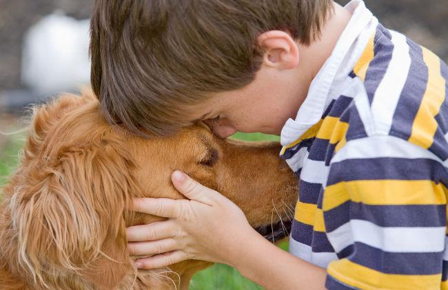 Jak pomóc dziecku pogodzić się ze śmiercią psa?
