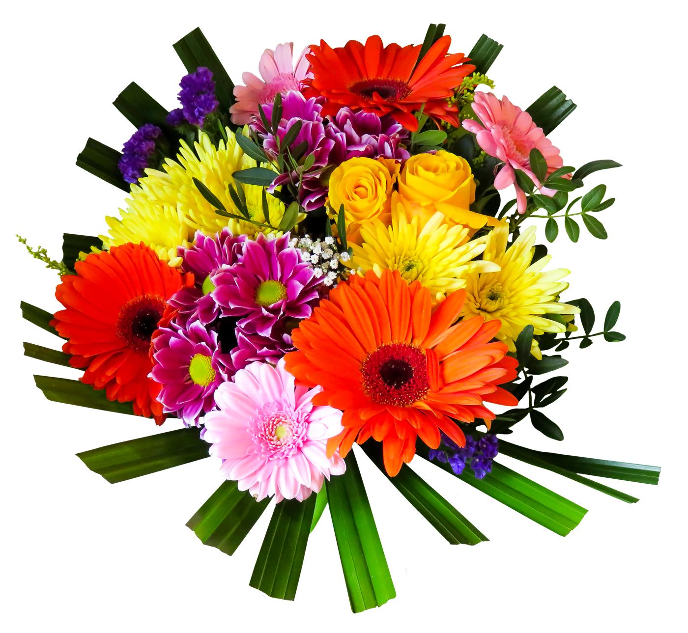 Png Colourful Flowers HD - shan studio