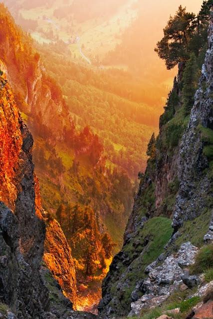 Nature S Detox From Switzerland