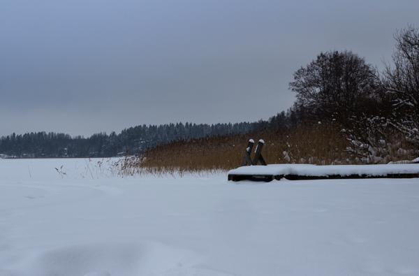järvimaisema talvella järvenjää etelä-suomessa