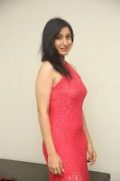 Sakshi Kakkar in Red Legsplit Sleeveless Gown at Dare movie Press meet ~  Exclusive 020.JPG