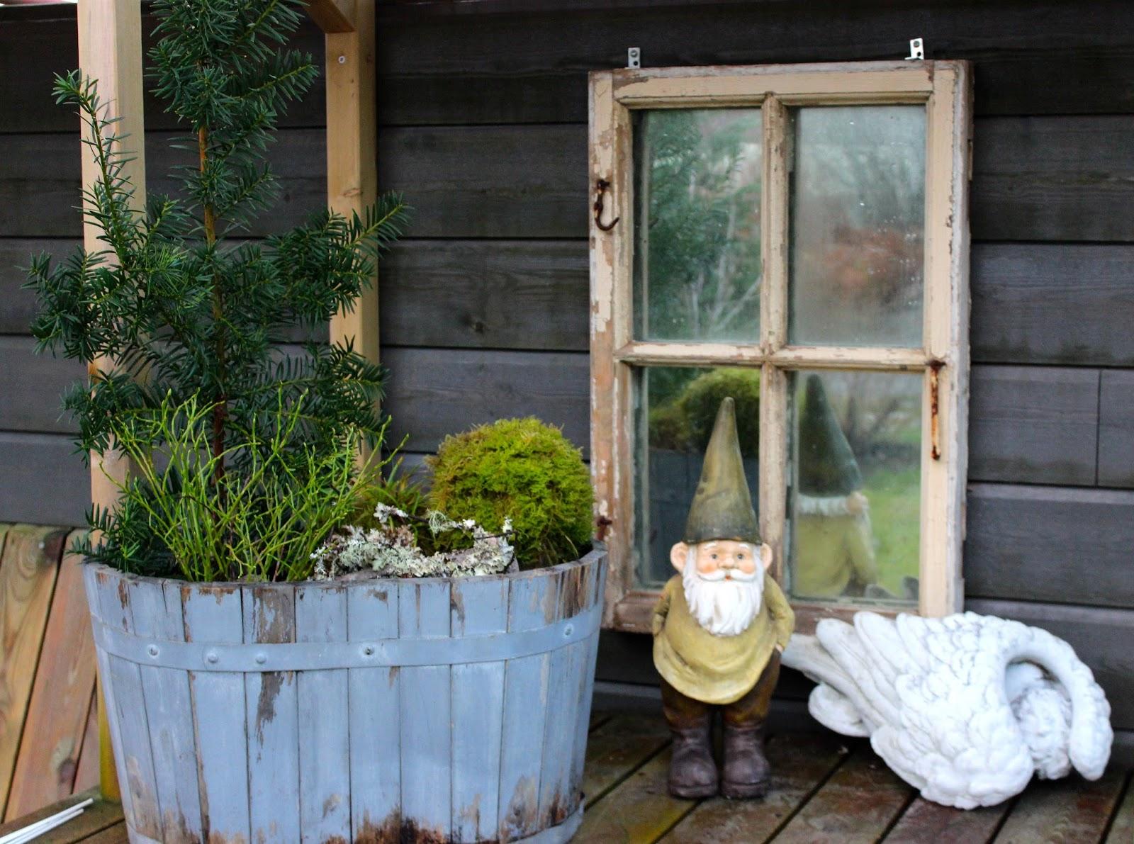 Alle nye Liv og Gus i hytte og hus: Adventstid i hagen QT-99