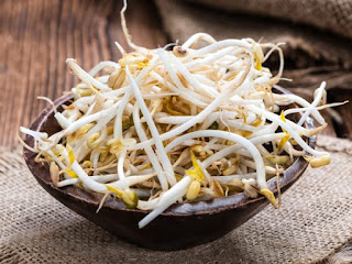 The Amazing Of Health Benefits Raw Bean Sprouts For Women Men And Children - Healthy T1ps