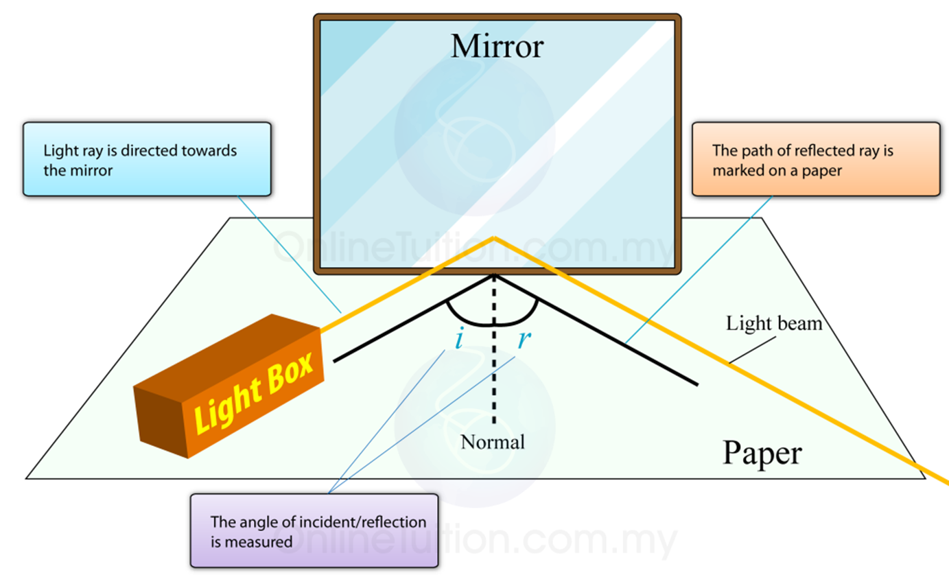 Reflection Of Light Wave