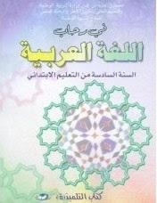 المستوى السادس:جذاذات في رحاب اللغة العربية