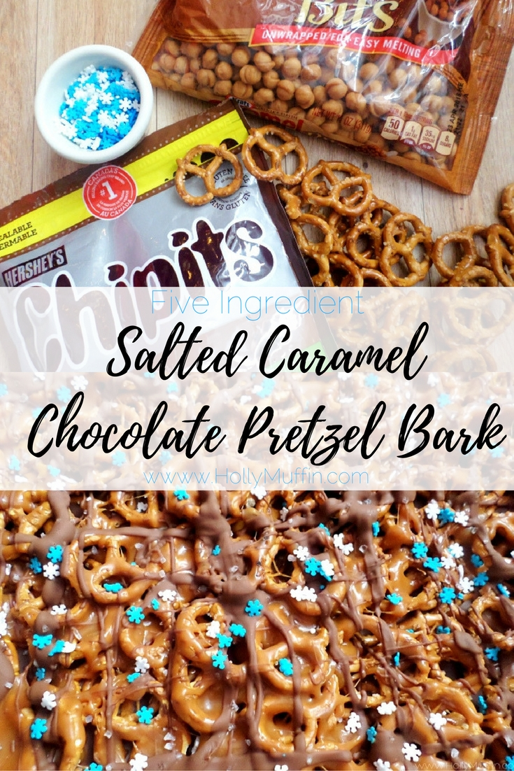 Salted Caramel Chocolate Pretzel Bark Recipe