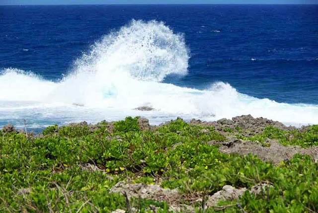 big wave off coast of Okinawa