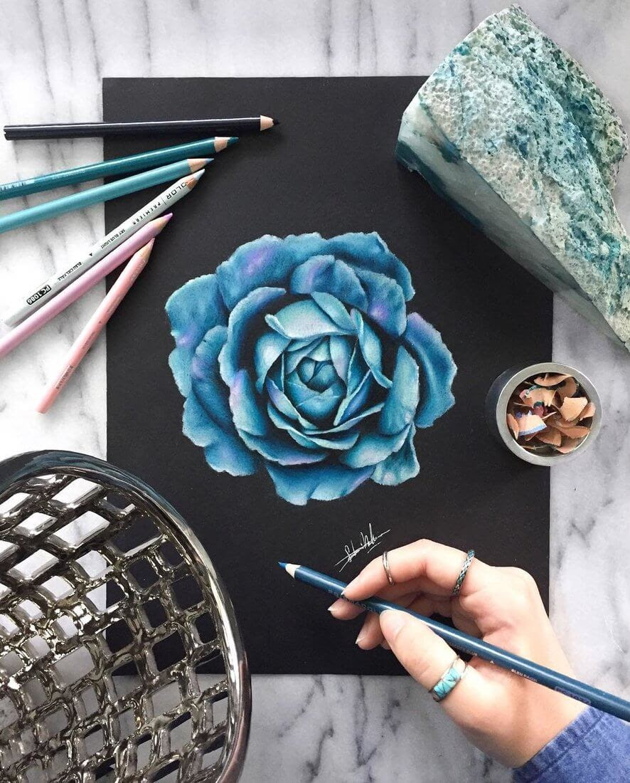 06-Blue-Rose-Safanah-Eclectic-Mixture-of-Realistic-Drawings-www-designstack-co