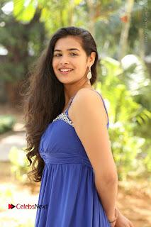 Actress Prasanna Stills in Blue Short Dress at Inkenti Nuvve Cheppu Movie Platinum Disc Function  0024.JPG